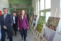 DÜZCE ÜNİVERSİTESİ - Düzce Üniversitesi'nde Dünya Ormancılık Su Ve Meteoroloji Günleri Etkinlikleri Başladı
