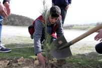 BARAJ GÖLETİ - Hizan'da Ağaçlandırma Çalışması
