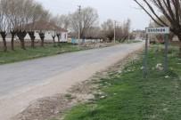 UÇAK KAZASI - Kahraman Pilot Köye Düşmemek İçin Kendini Feda Etmiş