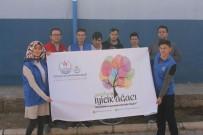 Kaman Gençleri 'Gençlerin İyilik Ağacaı' Projesi İle Ağaç Dikti