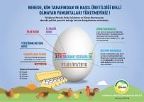 GIDA KODEKSİ - 'Kodlu Yumurta Uygulaması' Tüketicinin Yanıltılmasının Önüne Geçecek
