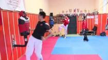 HIPERAKTIF - Şampiyon Tekvandocu Emre'ye Durmak Yok