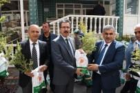 BELEDİYE BAŞKAN YARDIMCISI - Yeşilyurt Belediyesi'nden 4 Yılda 65 Bin Fidan