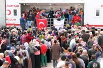 KOBANİ - Afrin'de Hayat Normale Dönüyor