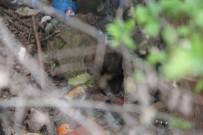 İTFAİYE ERİ - Apartman Boşluğuna Düşen Yavru Köpeği İtfaiye Ekipleri Kurtardı
