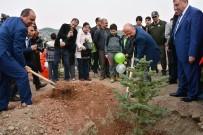 Bölge Müdürü Nane Açıklaması 'Amasya'da Son 15 Yılda 31,8 Milyon Fidan Dikildi'