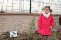 ERGUVAN - Devlet Ana Anaokulu Öğrencilerinden Hatıra Ormanı