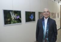 YUNUS NADI - Eser'in '1001 Kelebek'i, MTSO'da Sergilendi