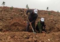 Görme Engelliler Ormancılarla Birlikte Fidan Dikti