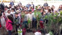 BELEDİYE BAŞKAN YARDIMCISI - Öğrenciler Orman Haftası'nda Fidan Diktiler