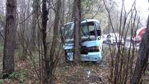 ZEKERIYAKÖY - Sarıyer'de Minibüs Ağaca Çarptı Açıklaması 5 Yaralı