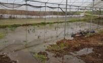 İBRAHİM ATEŞ - Söğüt'te Seraları Su Bastı, Çiftçiler Büyük Zarar Gördü
