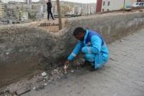 EL YAPIMI BOMBA - Temizlik İşçisi Okul Yoluna Tuzaklanmış Bomba Buldu