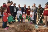 EROZYON - Adana BTÜ'de Dünya Ormancılık Haftası Kutlandı