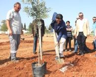 SÜLEYMAN KOÇ - Döşemealtı Belediyesi 8 Bin 300 Fidan Dikti