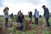 MUSTAFA VURAL - DSMMMO Üyeleri Kent Ormanı'na Fidan Dikti