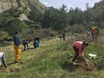 ERKMEN - Öğrenciler, Çam Fidanlarını Toprakla Buluşturdu