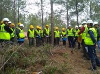 AKTÜEL - Ormancılara Silvikültür Eğitimi