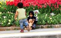 OYUNCAK BEBEK - Suriyeli Çocukların Çöpten Çıkan 'Oyuncak Bebek' Sevinci