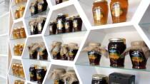 PROPOLIS - Yığılca Arısı Kozmetik Ve İlaç Sanayisine De Hizmet Edecek