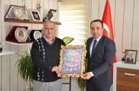 JİMNASTİK SALONU - Federasyon Başkanı Çelen'den İl Müdürü Yıldız'a Ziyaret