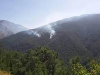 TERÖR OPERASYONU - Hatay'da Teröristlerin Çıkardığı Orman Yangını Kontrol Altına Alındı
