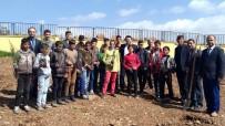 Musabeyli'de Öğrenciler Fidan Dikti