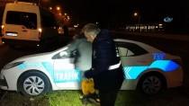 TEPE LAMBASI - Samsun'da Maket Trafik Polis Araçlarının Tepe Lambalarını Çaldılar