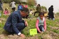 Turhal'da Fidanlar Toprakla Buluşturuldu