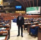 KATALONYA - Başkan Doğan Avrupa'ya Seslendi Açıklaması 'İki Yüzlüsünüz'