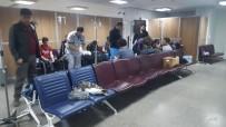 GÖRÜKLE - Bursa'da 150 Öğrenci Hastanelik Oldu