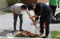 ELEKTRİK ÜRETİMİ - 'Elektrik Üretiminde KKTC'nin Önü Açık'