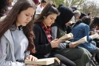 GEZİCİ KÜTÜPHANE - İl Kültür Ve Turizm Müdürü Taymuş Açıklaması 'İl Merkezinde 80 Bin Okuyucumuz Var'