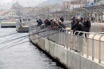 Mudanya'daki Sahil Bulvarı Eminönü'nü Aratmıyor