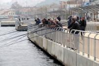 Oltasını Kapanın Akın Ettiği Mudanya'daki Sahil Bulvarı Eminönü'nü Aratmıyor