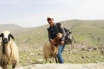 Sosyal Medyada Dikkat Çeken Çoban, İHA'ya Konuştu