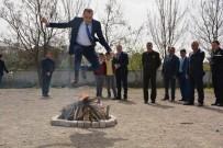 NEVRUZ BAYRAMı - Türk Dünyası Ve Toplulukları Haftasına Renkli Kutlama