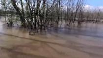 MEHMET MÜEZZİNOĞLU - Edirne'de Otomobil Taşkın Sularına Gömüldü