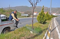 YAZ MEVSİMİ - Gölbaşı İlçesinde Ağaçlara İlaçlı Bakım