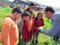 KUMLUOVA - Okullarda 'Organik Tarım' Eğitimi
