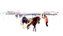 FATİH MEHMET ERKOÇ - Kahramanmaraş'ta 2'İnci Ahir Dağı Atlı Kızak Türkiye Şampiyonası Kıran Kırana Geçti