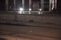 FÜNYE - Kars'ta Şüpheli Çantadan Eşyalar Çıktı
