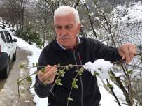 MÜNECCIM - Şahin Açıklaması 'Her Kar Yağdığında Fındıkta Don Olmaz'
