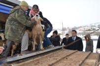 KÜLTÜR MANTARı - 2018 Yılı Genç Çiftçi Destek Başvuruları Başlıyor