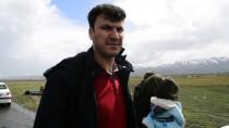 Eleşkirt Belediye Başkanı Sarı Trafik Kazasında Yaralandı