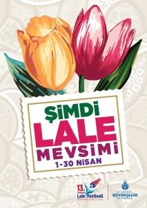 İstanbul'da 'Şimdi Lale Mevsimi'