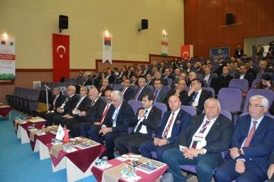 Kırşehir'de Yem Ve Kırmızı Et Sempozyumu