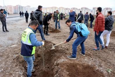 Öğrenciler Afrin Ve El Bab Şehitleri İçin Ağaç Dikti