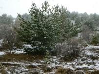 KARLA MÜCADELE - Posof'ta Kar Yağışı