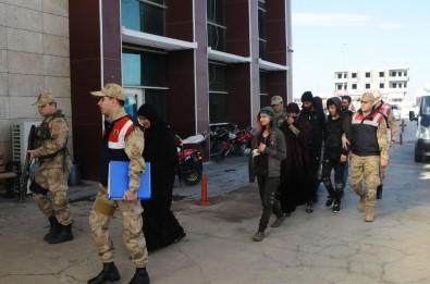 Şanlıurfa'da Terör Operasyonu Açıklaması 6 Gözaltı